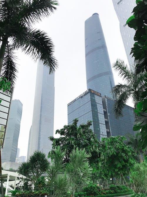 Immagine gratuita di architettura, città, edifici, edificio a molti piani