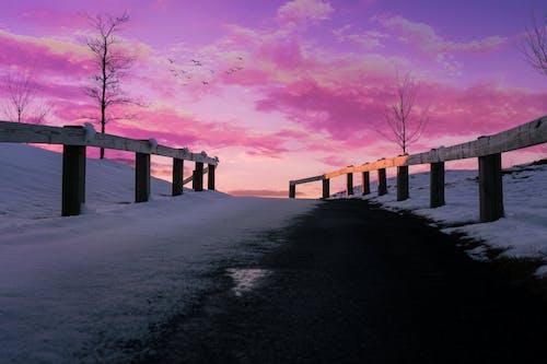 Darmowe zdjęcie z galerii z estetyka, niebo, różowe niebo, różowy