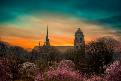 Imagine de stoc gratuită din aest, biserică, cer, estetică