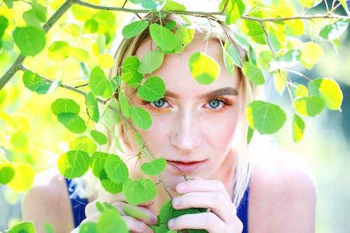 Ilmainen kuvapankkikuva tunnisteilla henkilö, kasvikunta, kasvot, katsominen