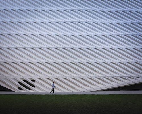Δωρεάν στοκ φωτογραφιών με Los Angeles, άνδρας, αρχιτεκτονική, αρχιτεκτονικό σχέδιο