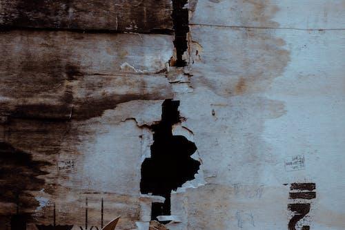 Gratis lagerfoto af grunge, tekstur, træ