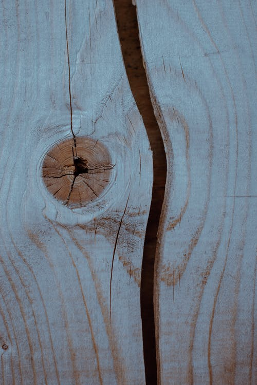 Close-Up Photo of Wood