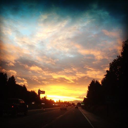 ağaçlar, düşmek, gökyüzü, gün batımı içeren Ücretsiz stok fotoğraf