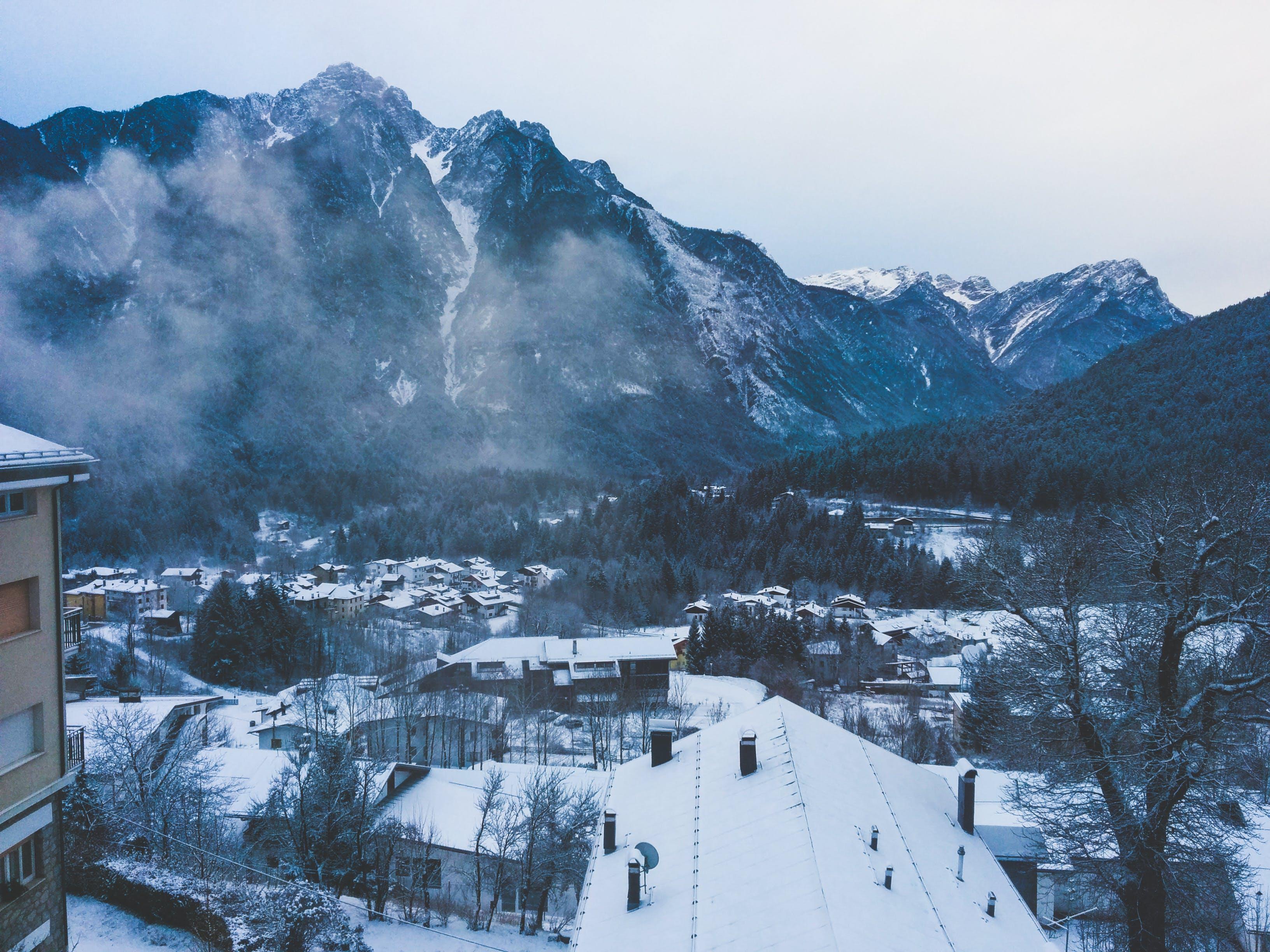 Бесплатное стоковое фото с горы, дерево, деревья, долина