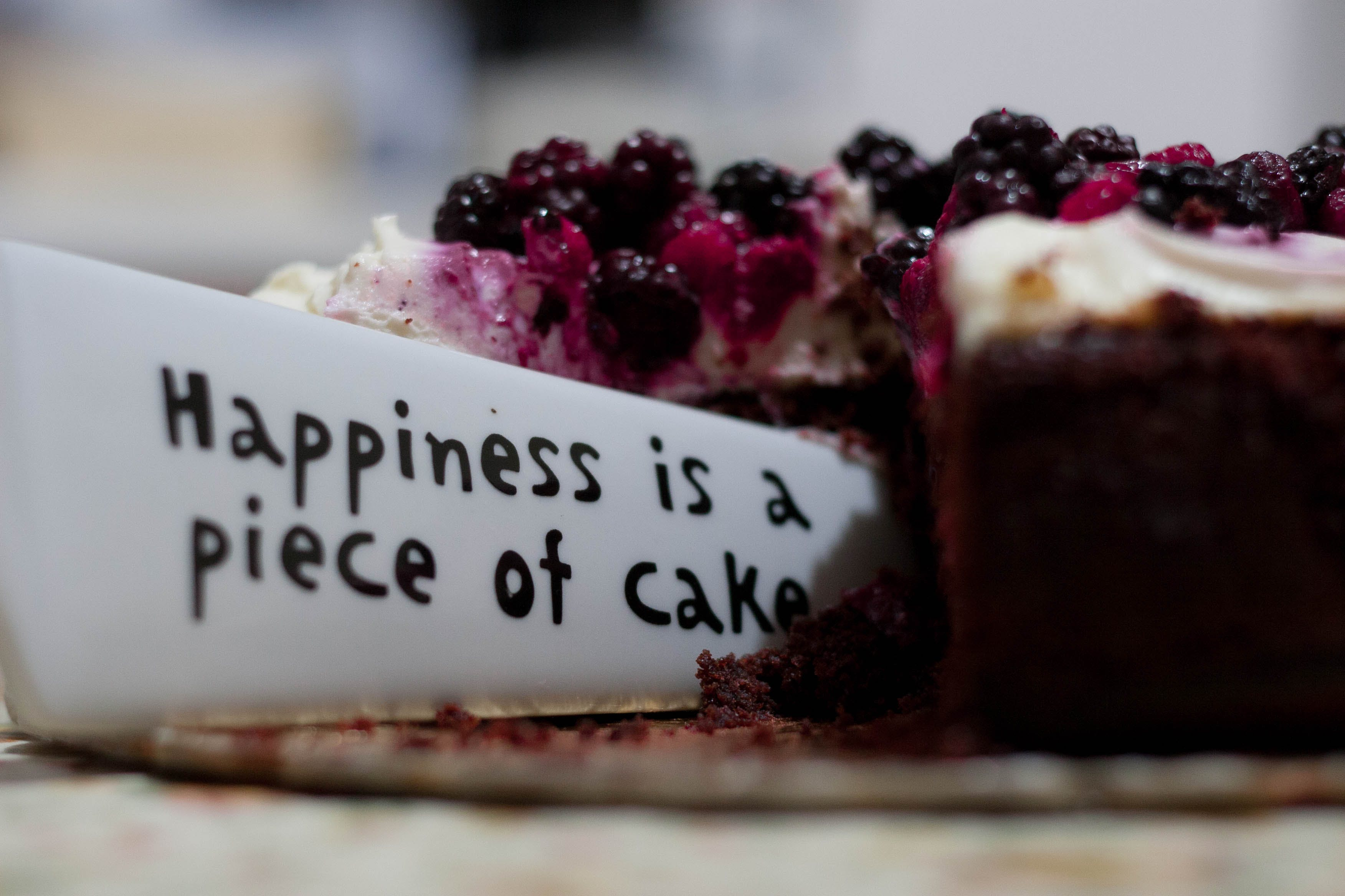Happiness Is a Piece of Cake Close Up Photography