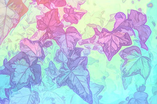 Free stock photo of ivy, nature, pastel tones, pattern