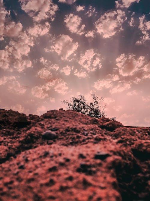 傍晚的天空, 山, 樹, 石 的 免费素材照片