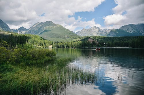 Free stock photo of forest, green, high tatras, hill