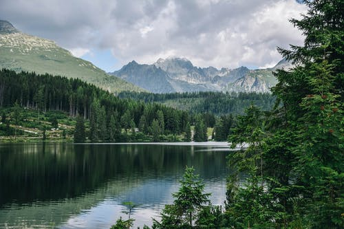 ağaçlar, çevre, dağlar, doğa içeren Ücretsiz stok fotoğraf