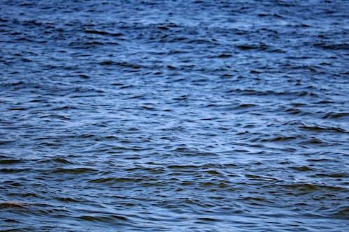 Kostenloses Stock Foto zu blaue wasser, hell, meer, natur