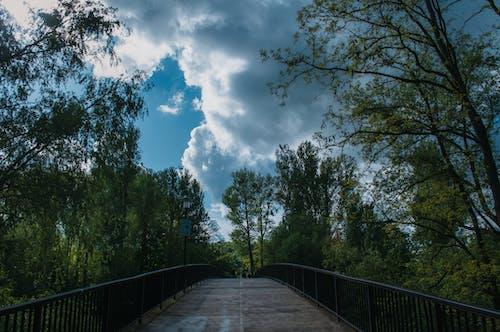 Free stock photo of blue, bridge, clouds, green