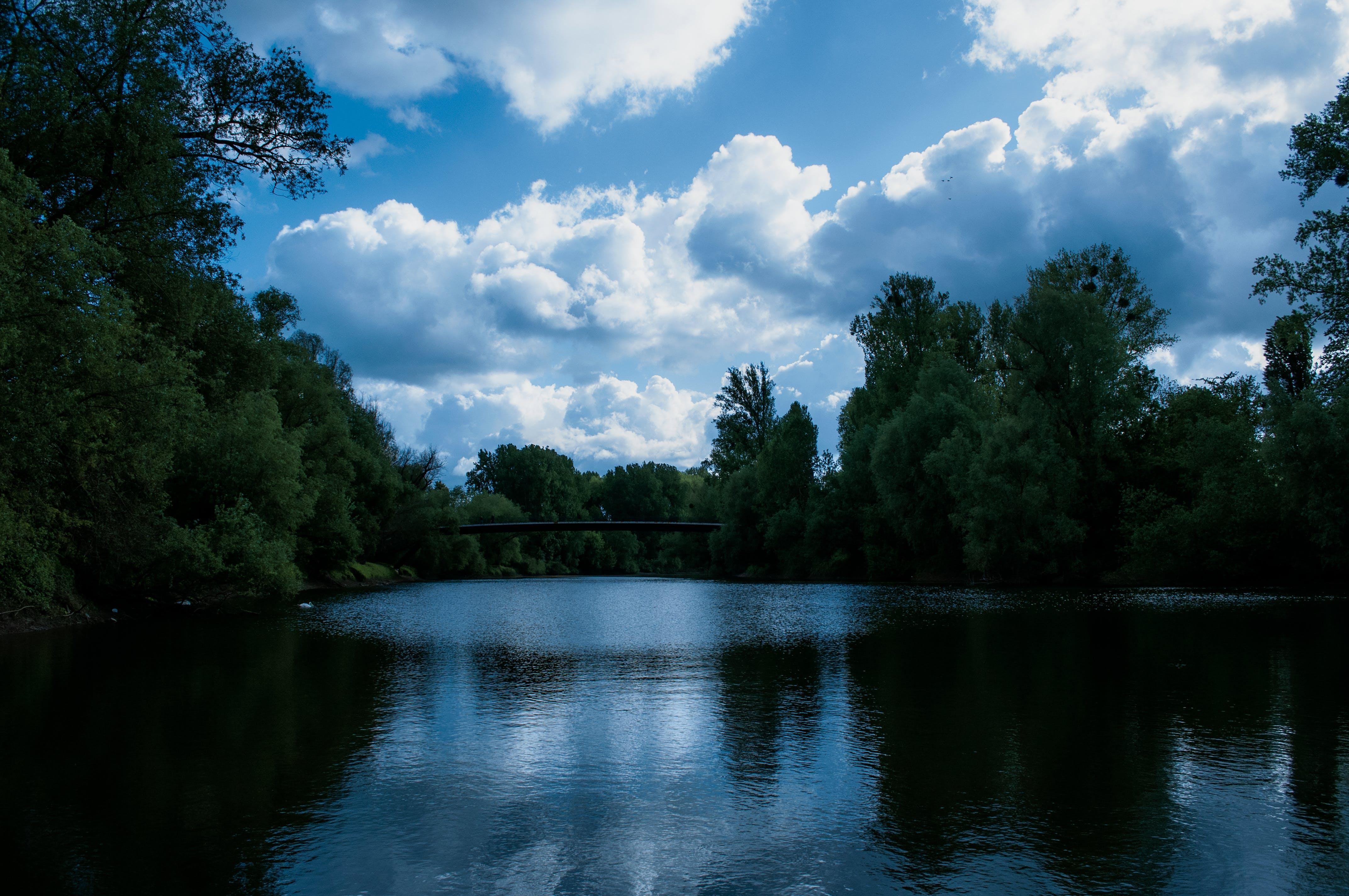 天空, 河, 綠色, 美丽的风景 的 免费素材照片