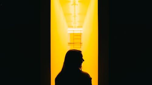 Ảnh lưu trữ miễn phí về ánh sáng, bóng, Chân dung, con gái