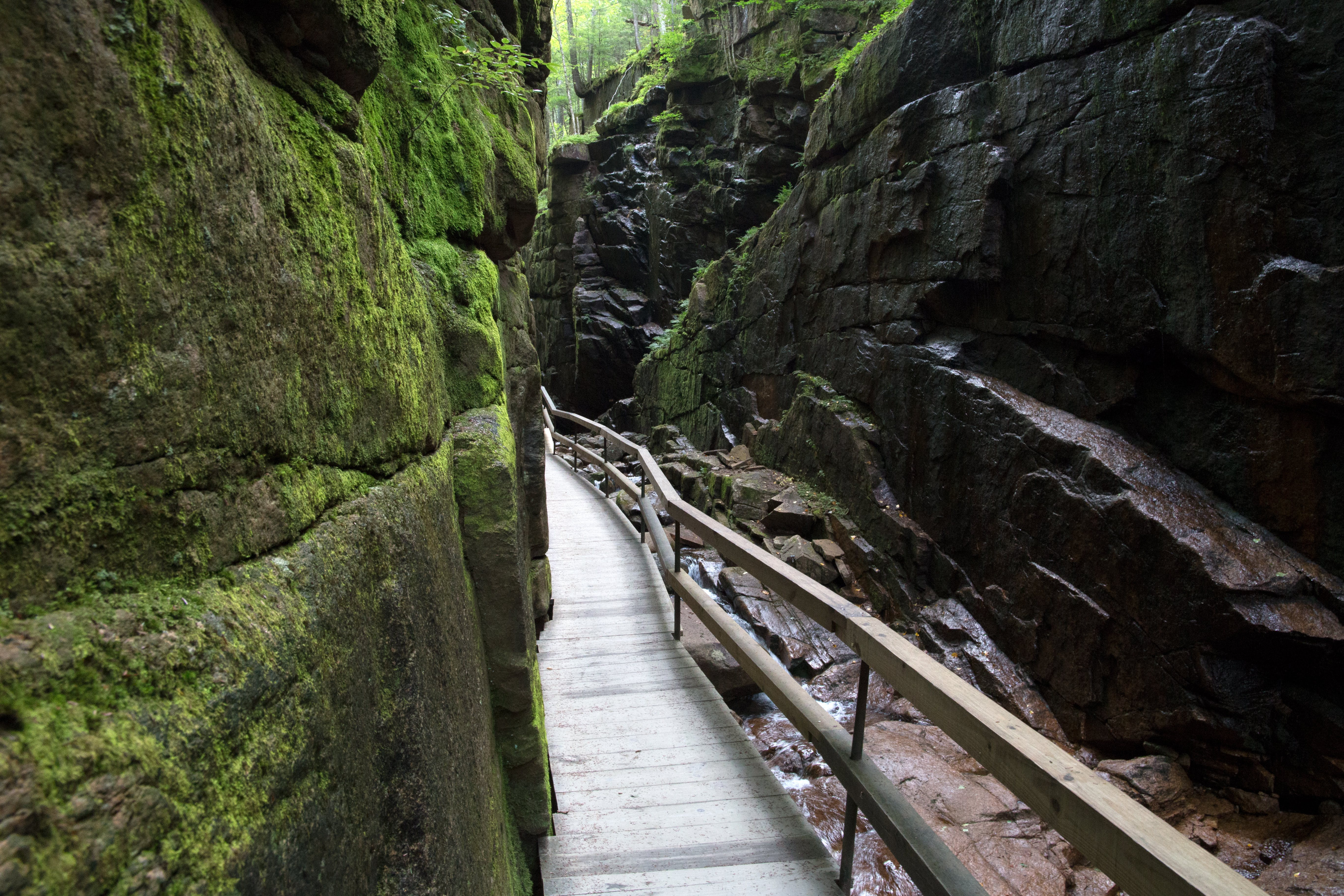 Gray Wooden Bridge Between Two Mossy Rock Formation