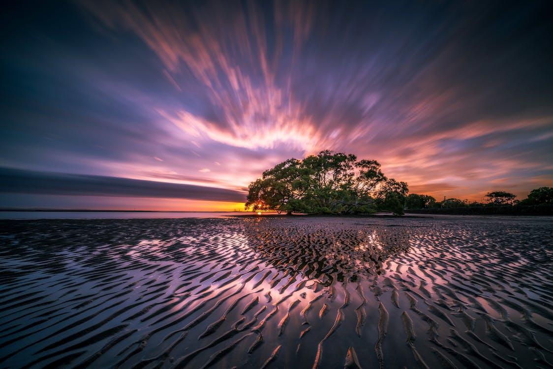 chmury, drzewa, formacja