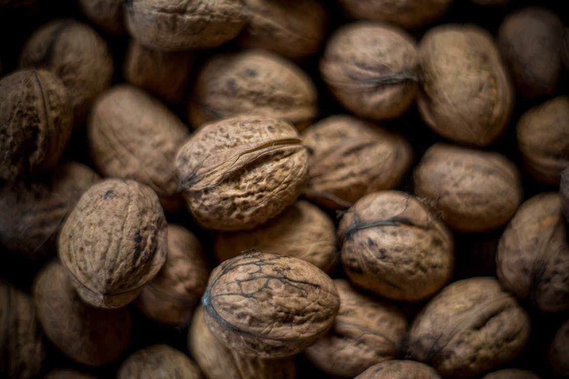 Macro Shot of Brown Nut