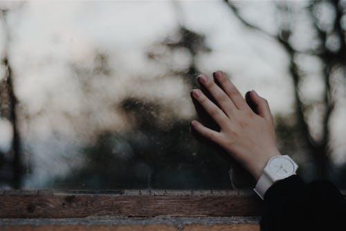 專注, 手, 手指, 手錶 的 免費圖庫相片