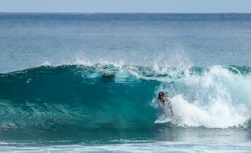 Foto stok gratis berselancar, esports, gelombang, gubuk pantai