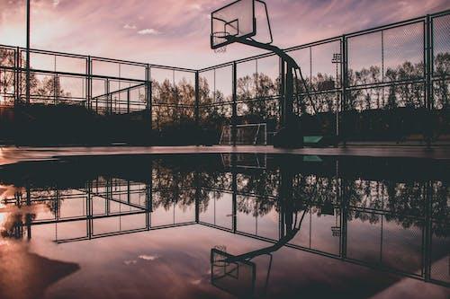 シルエット, バスケットボールのコート, バスケットボールバスケットボール, バスケットボールフープの無料の写真素材