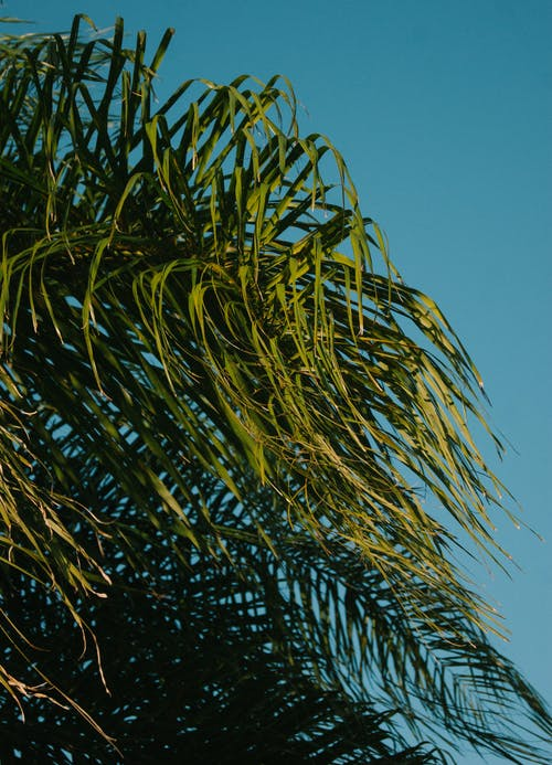 Foto profissional grátis de aumento, céu, céu azul, céu limpo