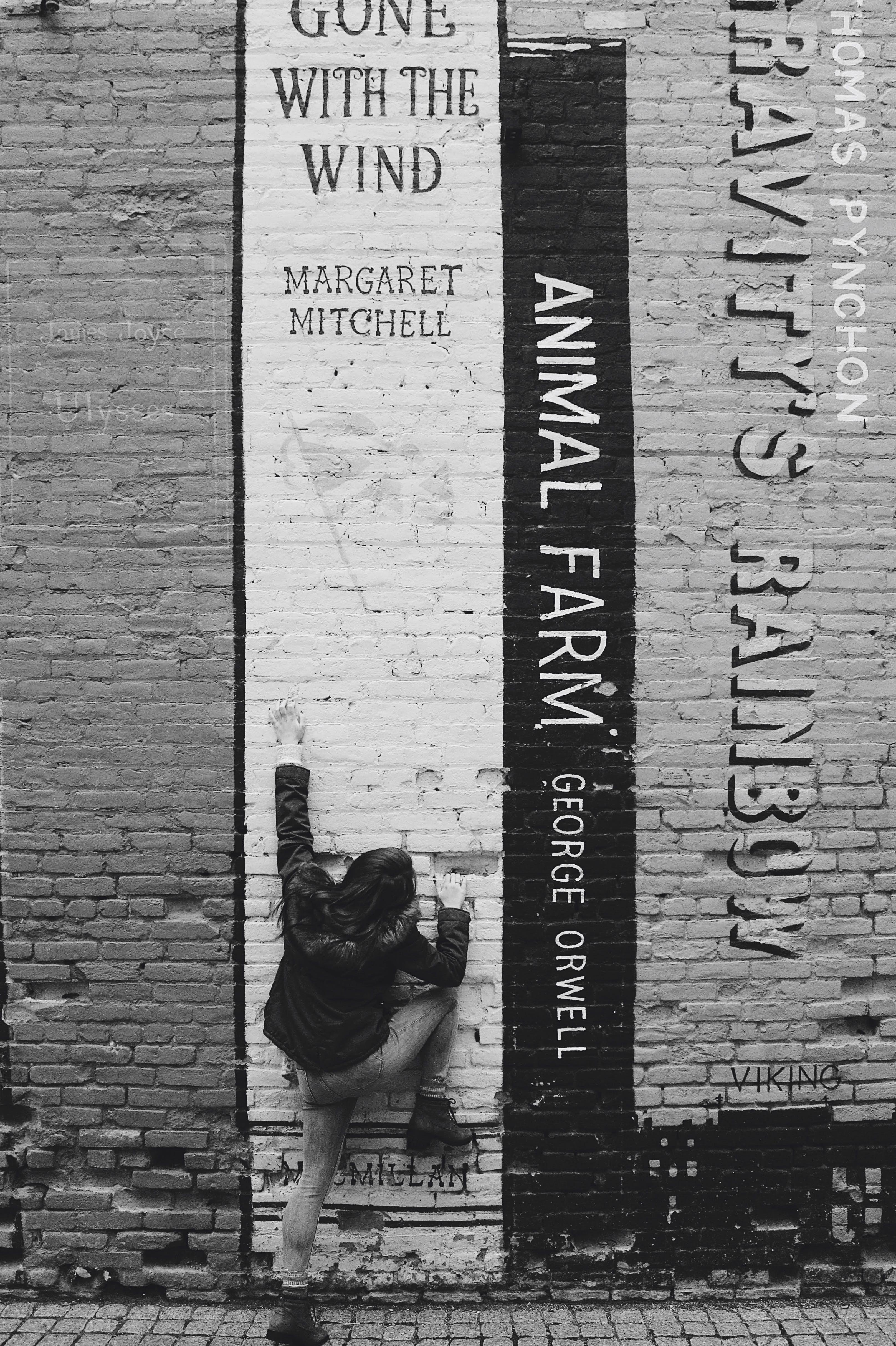 Základová fotografie zdarma na téma architektura, černobílá, černobílý, cihlová zeď