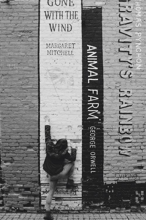 Kostnadsfri bild av arkitektur, gata, gatukonst, graffiti