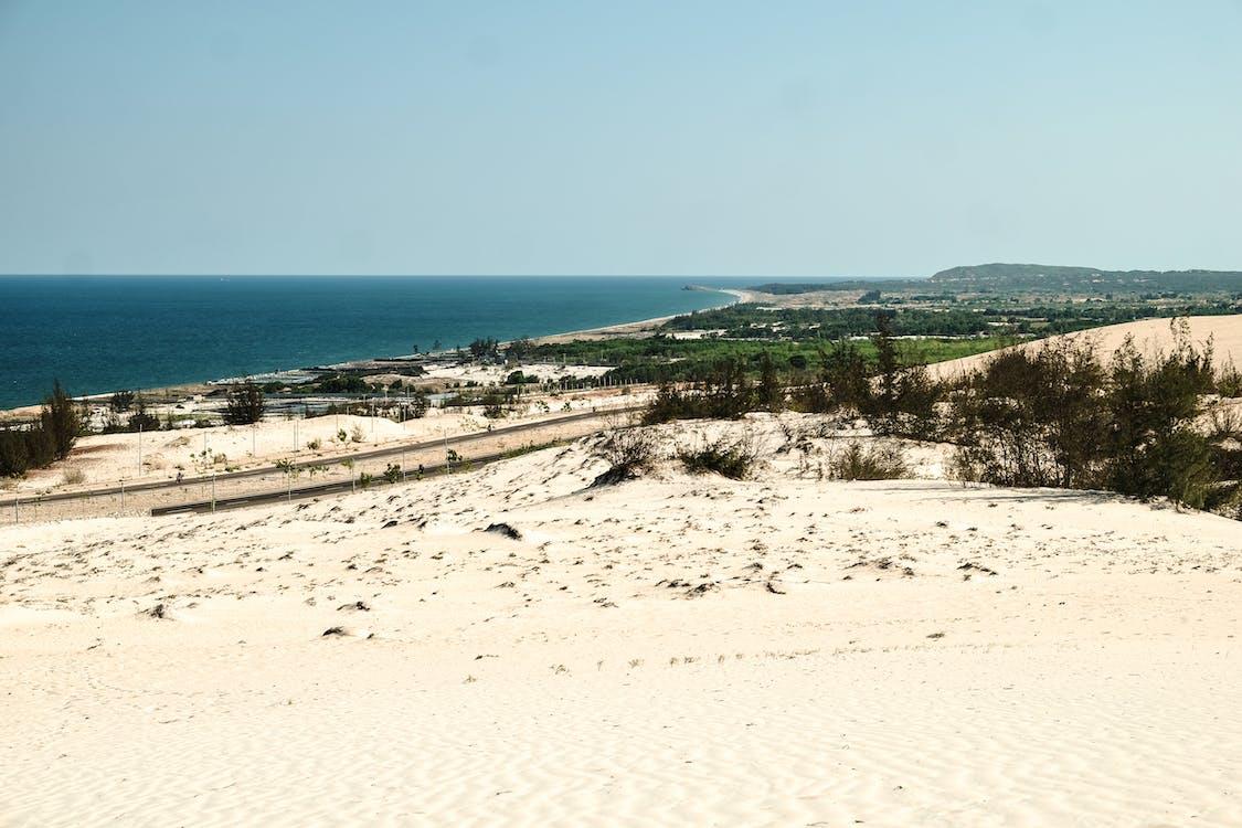 在海邊, 晴朗的天空, 沙丘