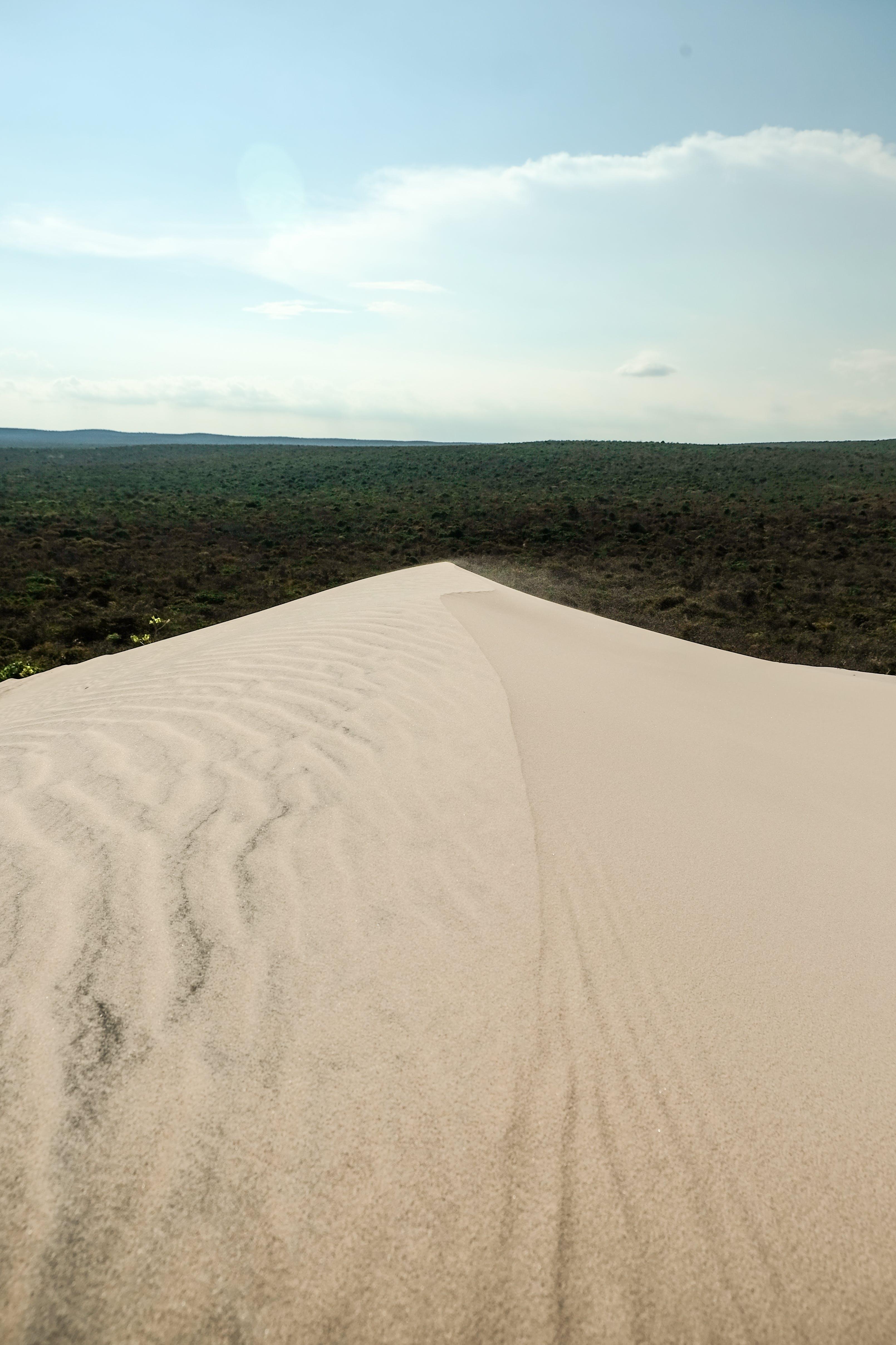 Ilmainen kuvapankkikuva tunnisteilla hiekka, hiekkadyyni, huippu, jako