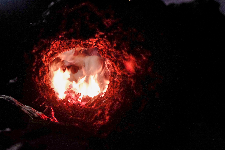 Ilmainen kuvapankkikuva tunnisteilla Nuotio, palaminen, polttopuu, puu
