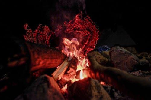 Foto profissional grátis de fogo, fogueira, lenha, leve
