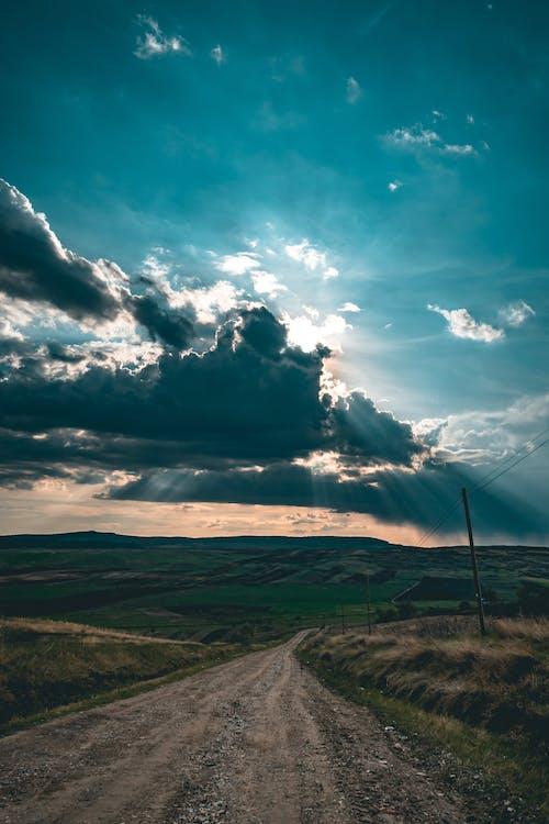 Grass Field Road Scenery