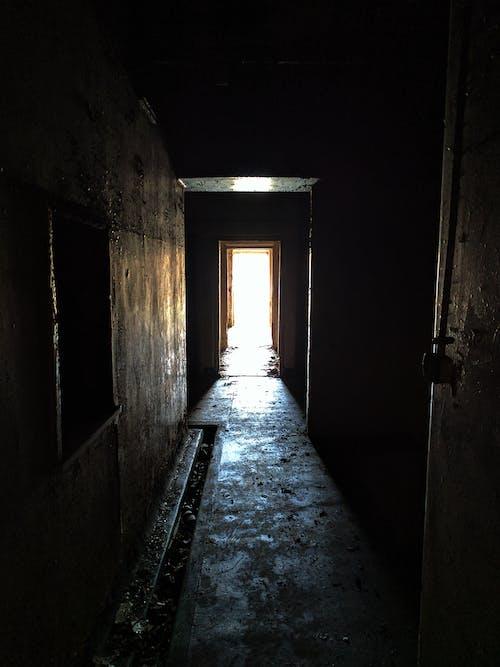 Free stock photo of abandoned, contrast, creepy, damp