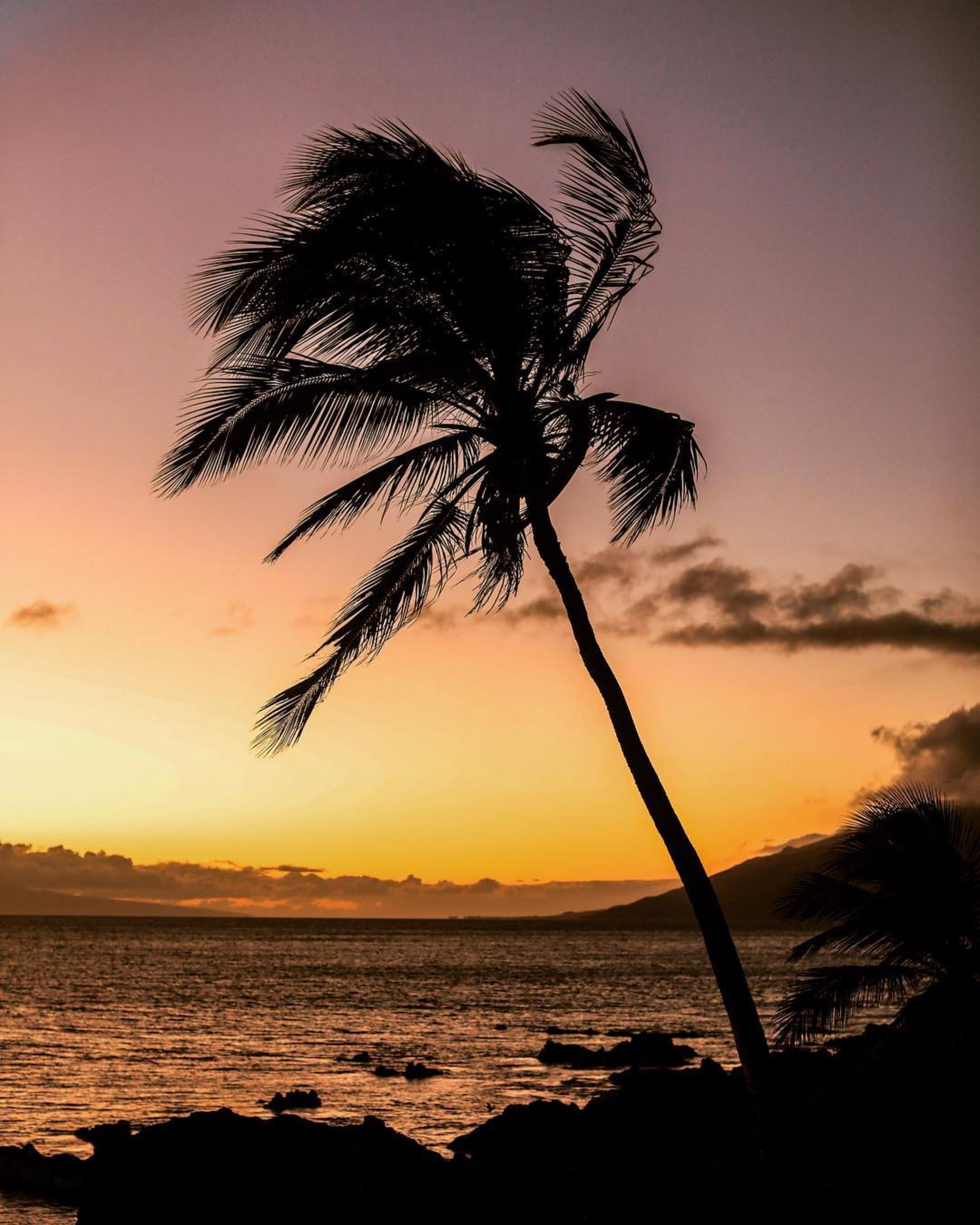 Ingyenes stockfotó alkonyat, arany horizont, ég, festői témában