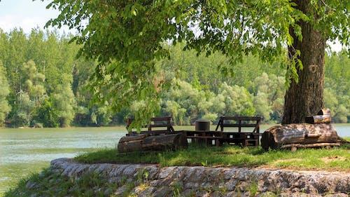Fotos de stock gratuitas de naturaleza, río