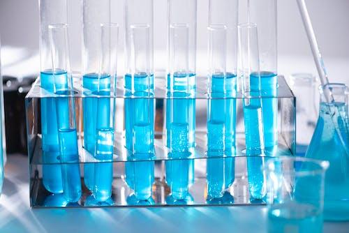 Fotos de stock gratuitas de análisis, azul, bacterias, biología