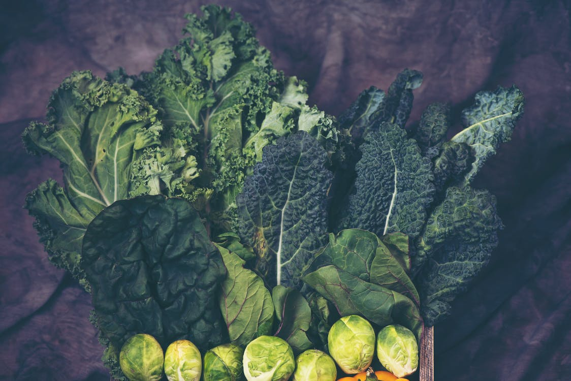 Fotos de stock gratuitas de agricultura, col, color