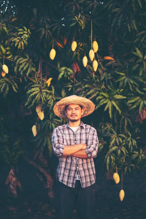 Photo of Man Standing In Front of Mango Tree with His Arms Crossed