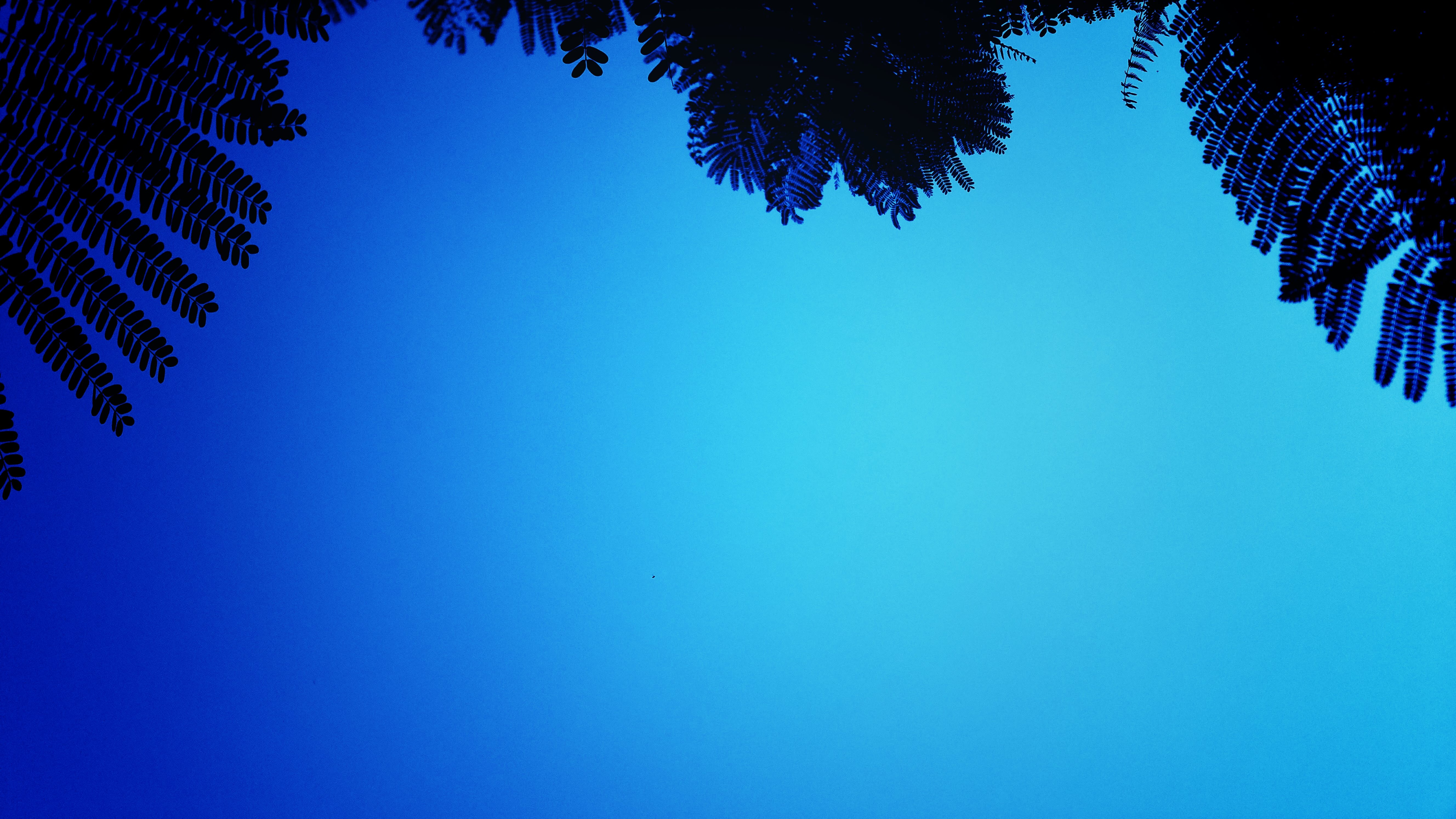 Free stock photo of black, blue, blue sky, clear sky