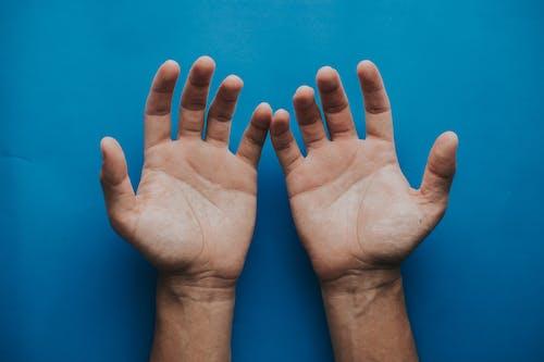 Kostenloses Stock Foto zu finger, hände, haut, palme