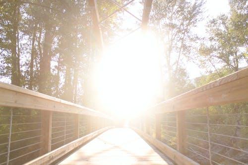 Free stock photo of bridge, light