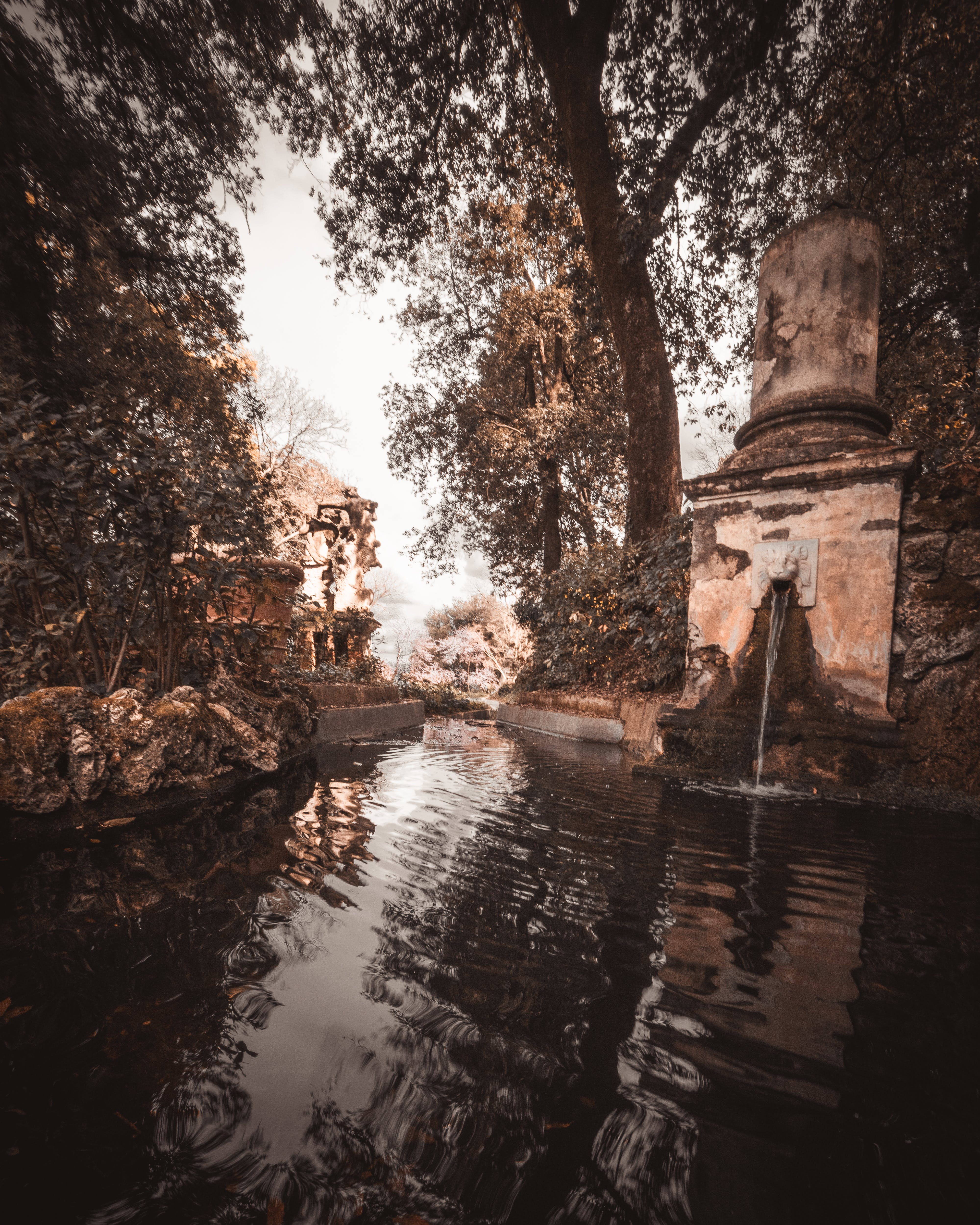 Free stock photo of fountain, old, water