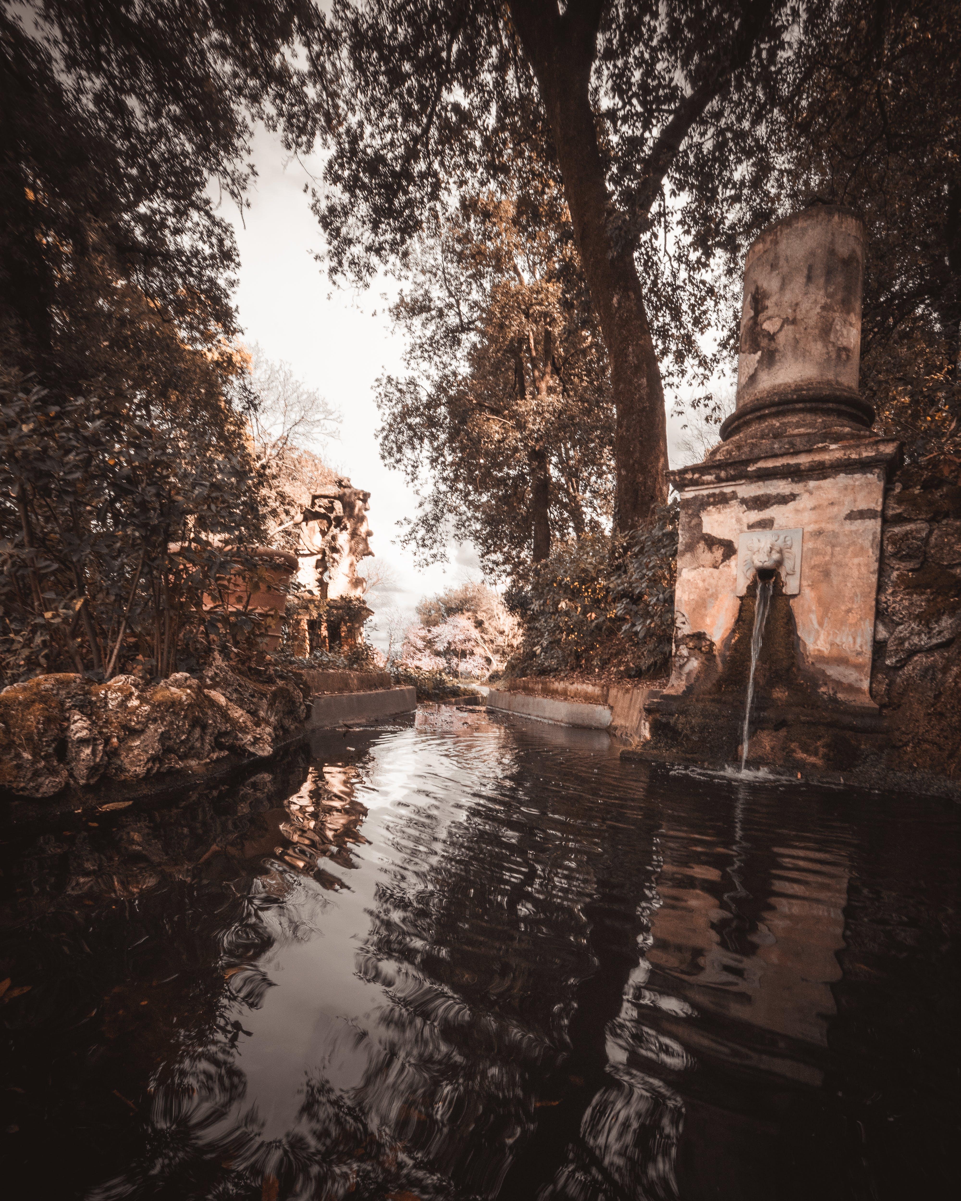 Fotos de stock gratuitas de agua, antiguo, fuente