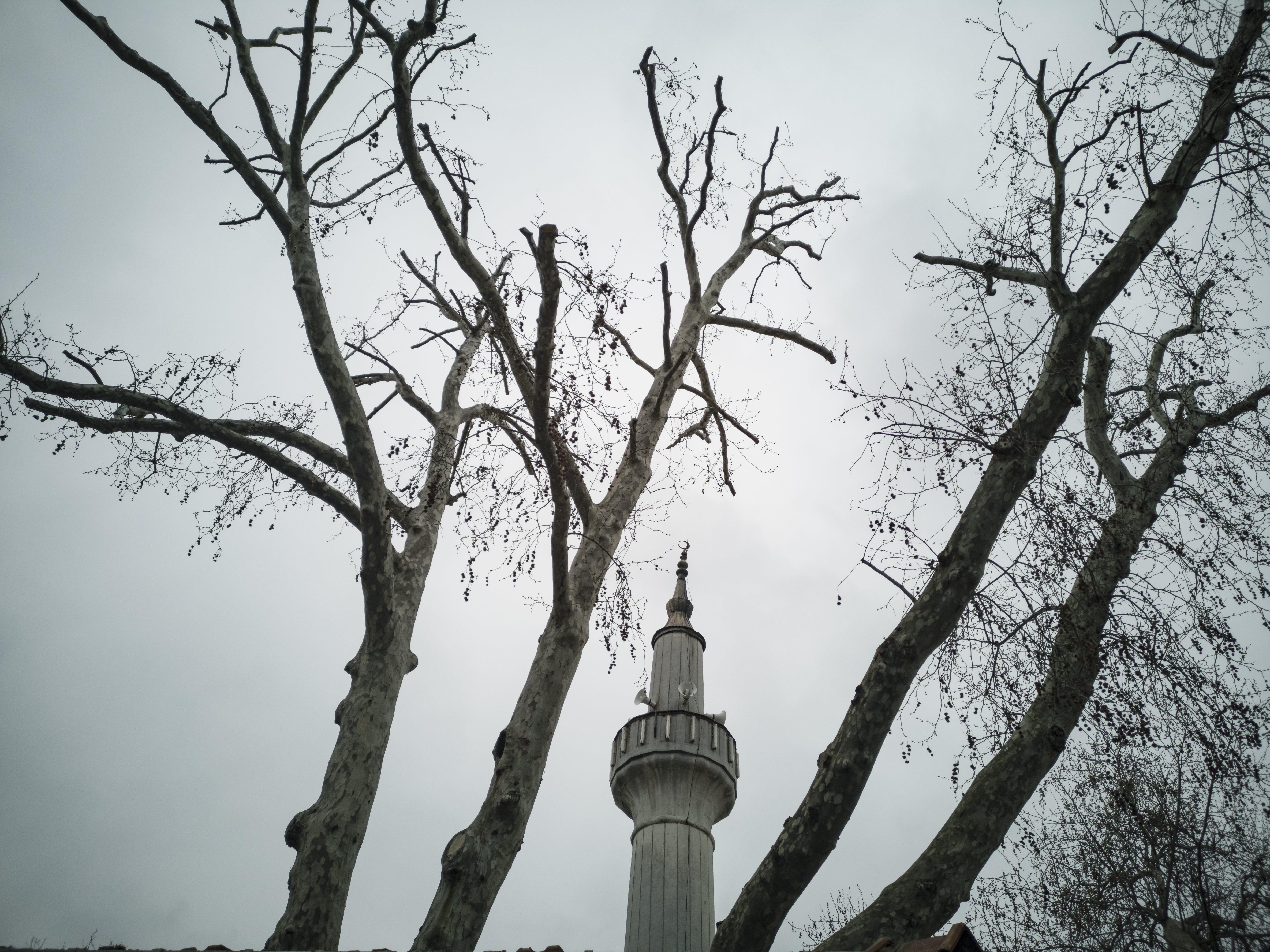 Free stock photo of architecture, god, minaret, mosque