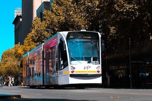 Free stock photo of tram