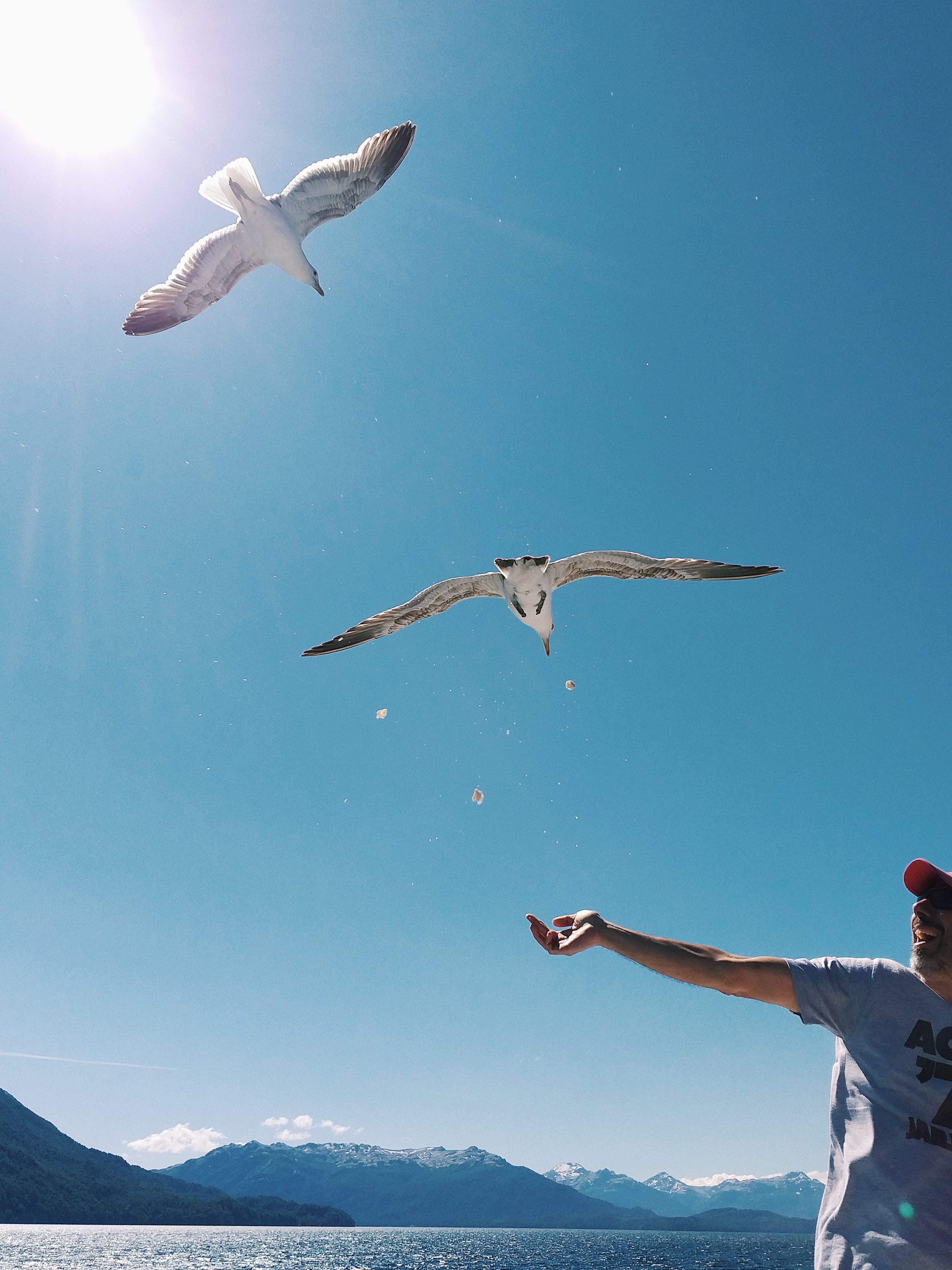 Δωρεάν στοκ φωτογραφιών με αναψυχή, άνθρωπος, βουνό, γαλάζιος ουρανός