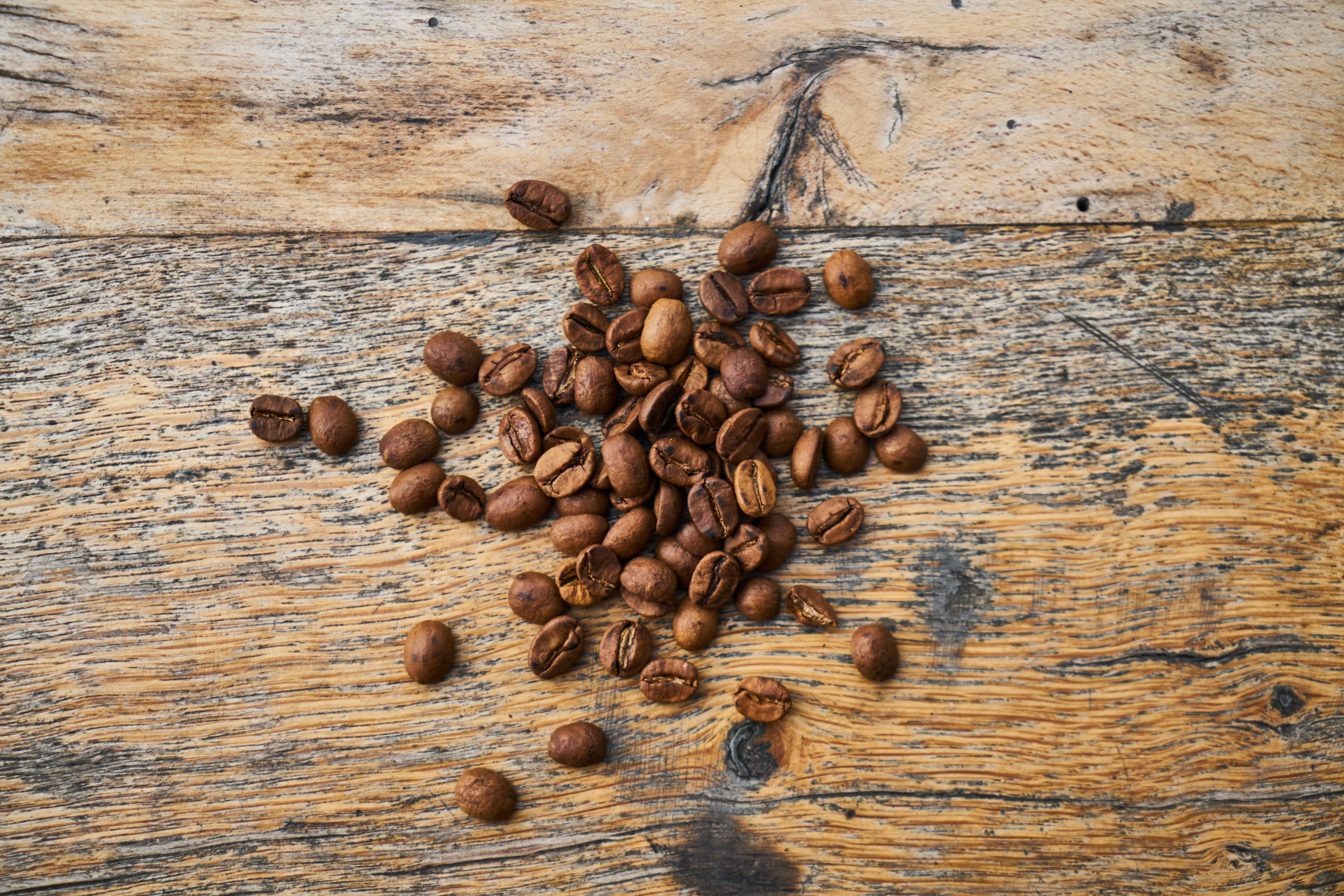 Free stock photo of arabica, aroma, aromatic, barista