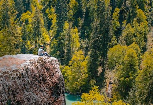Gratis stockfoto met avontuur, bomen, buiten, buitenshuis