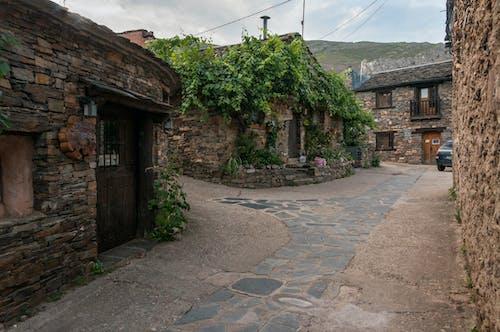 kırsal alan içeren Ücretsiz stok fotoğraf