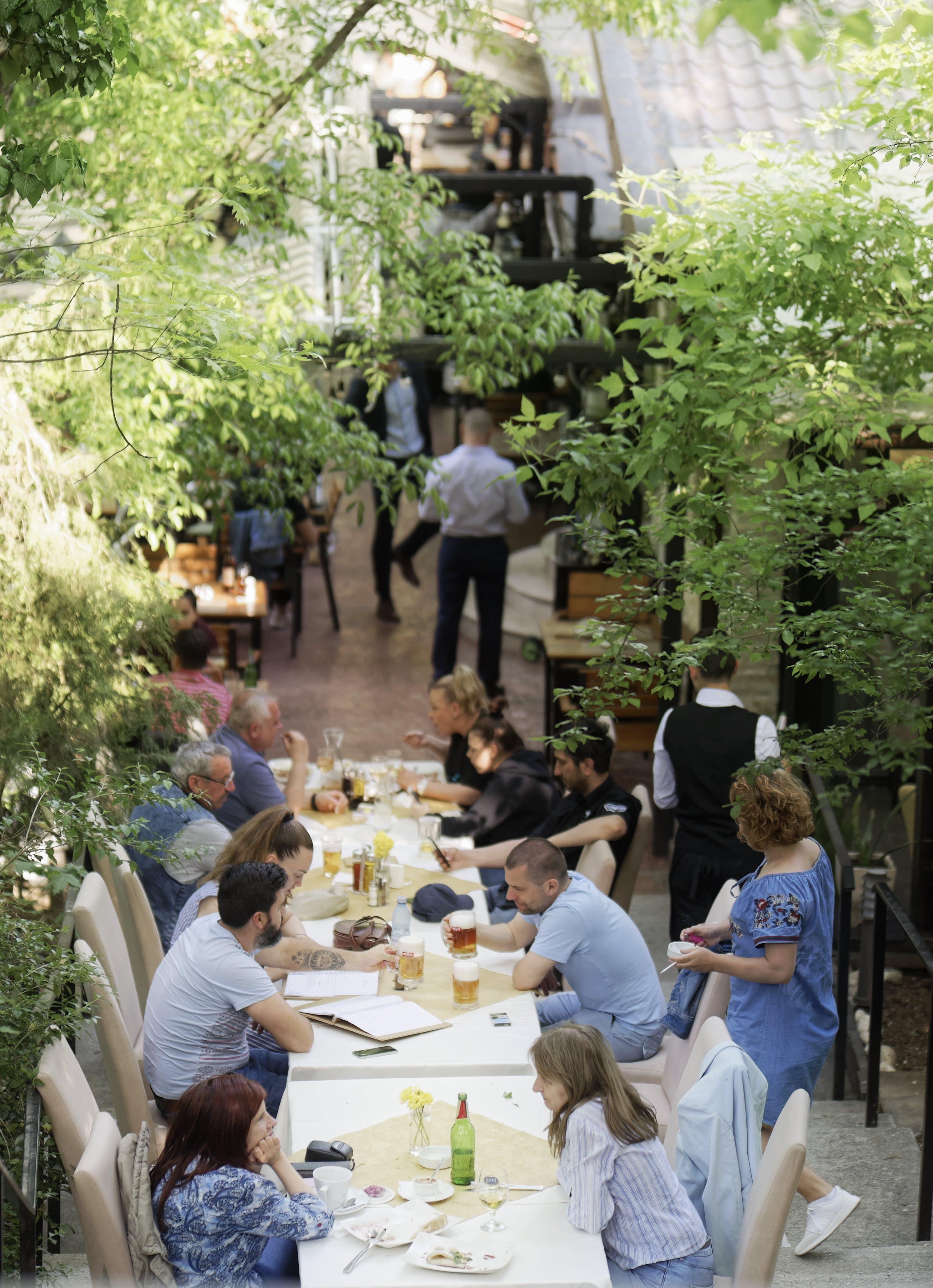 Foto d'estoc gratuïta de a l'aire lliure, arbres, bevent, entreteniment